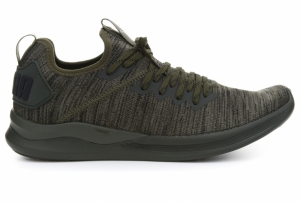 Pantofi de alergat  PUMA  pentru barbati IGNITE FLASH EVOKNIT 190508_04