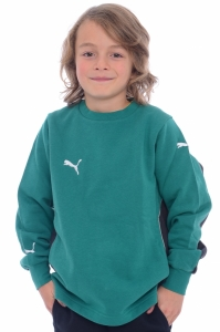 Bluza  PUMA  pentru copii V-KON SWEAT JR 650992_041