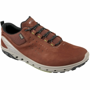 Pantofi sport  ECCO  pentru barbati BIOM VENTURE 82072450_653