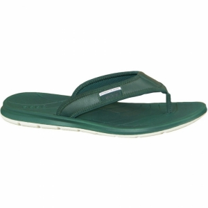 Papuci  ECCO  pentru barbati INTRINSIC TOFFEL THONG 88001401_029