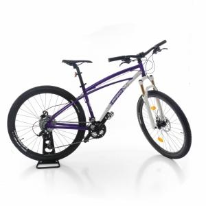Bicicleta  PEGAS  pentru femei DRUMET F CU 24 VITEZE A01MTBG24S_VIO